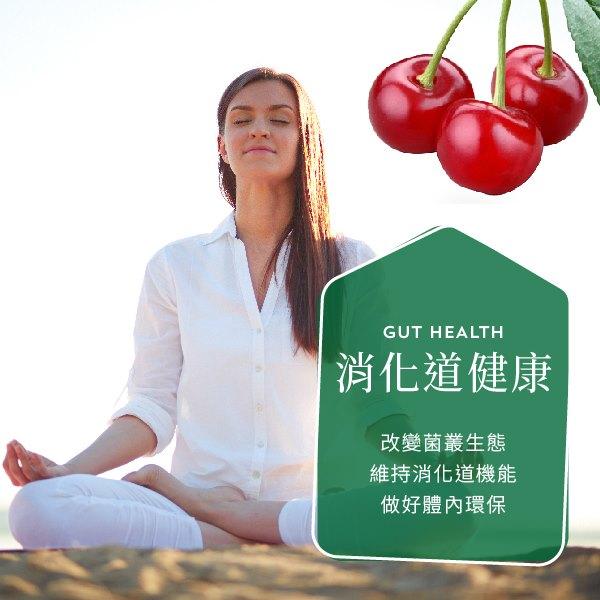 消化道健康